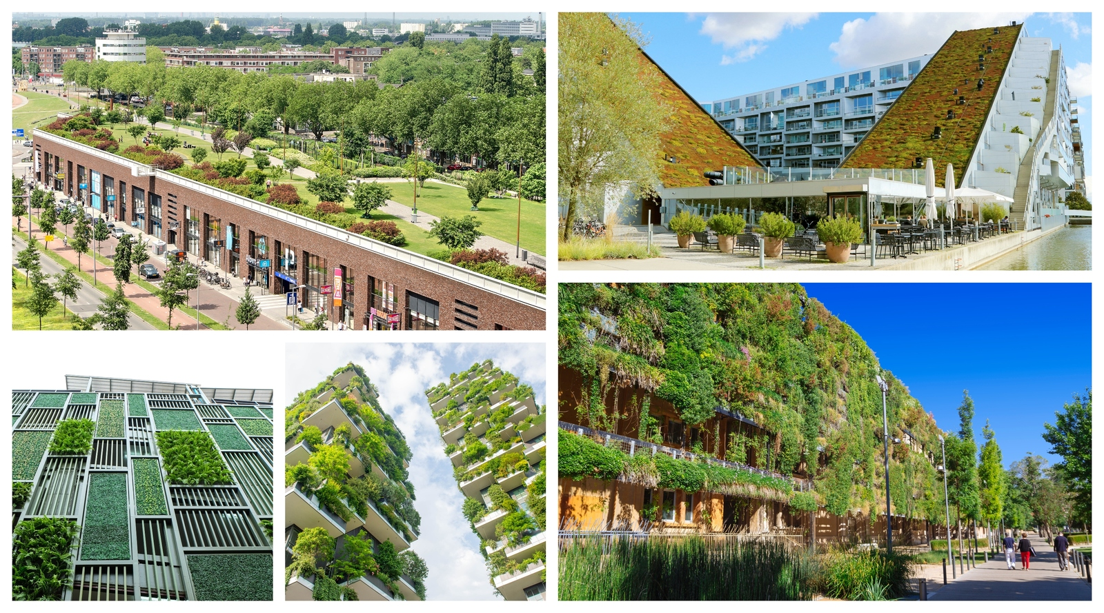 green gardens Europea 2020 collage.jpg